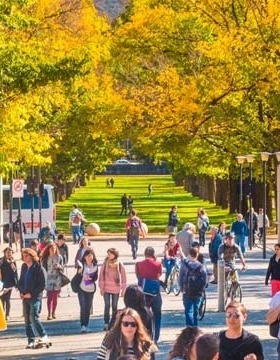 ANU ranked top in Australia for arts and humanities