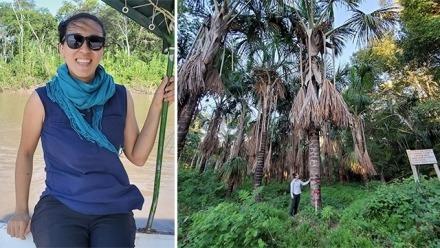 Update from Latin America - Diana Tung visits Peru