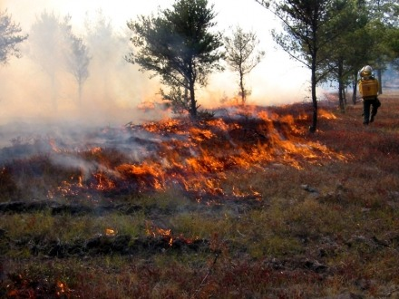 Call for more funding of Indigenous fire practices in our preparation for summer